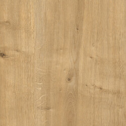 HD244303 oak natural engraved 22x2