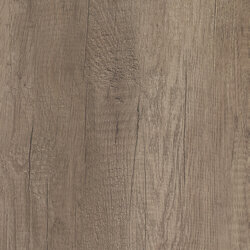 H3332 ST10 Grey Nebraska oak